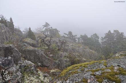 Helsingin edustalla on kymmenittäin harvaan asuttuja tai luonnonvaraisia saaria. Niistä suurin osa tulee säilyttää virkistysalueina. Kuvani on Vallisaaren itäisiltä kallioilta. Kuva © Matti Niiranen